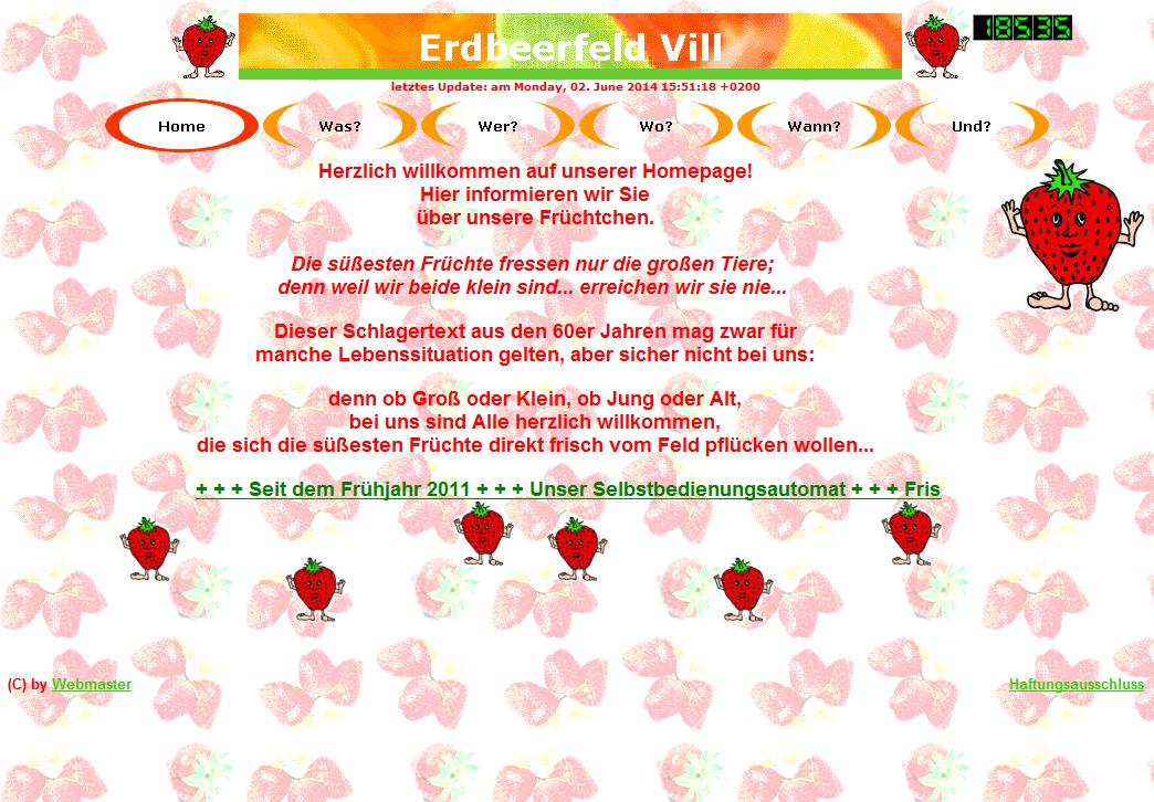 ErdbeerFeldVillHP01