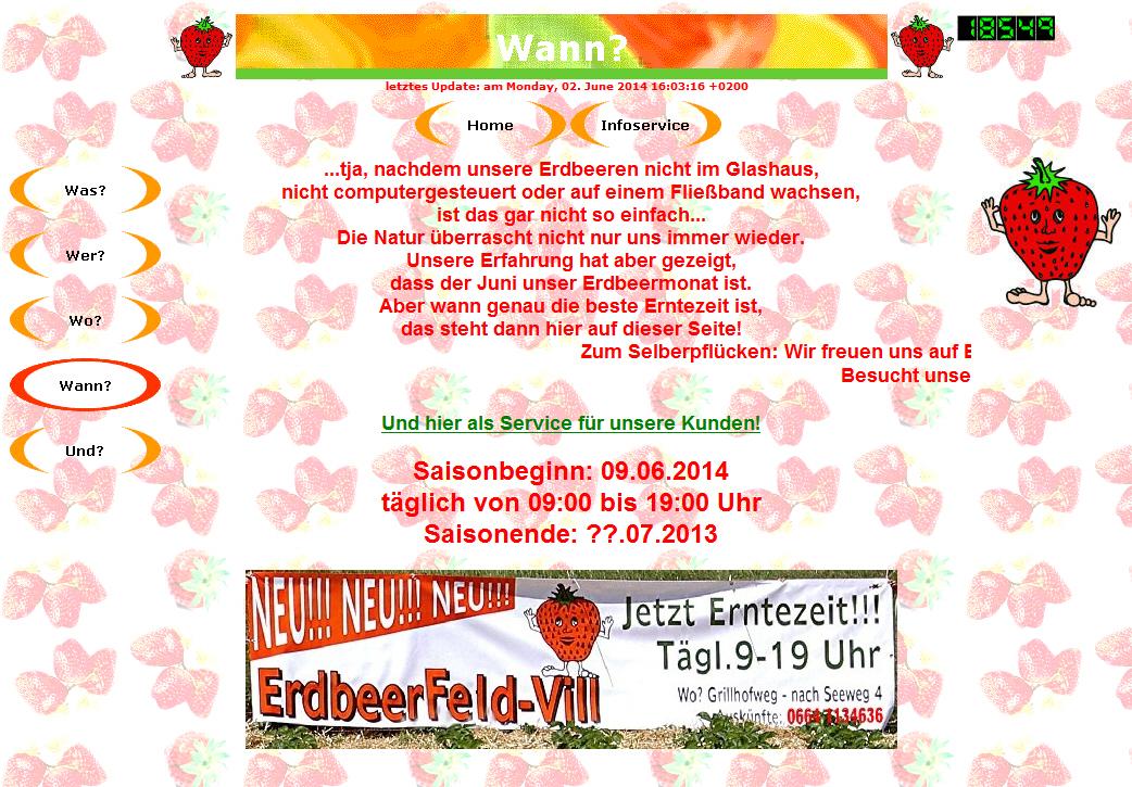 ErdbeerFeldVillHP08