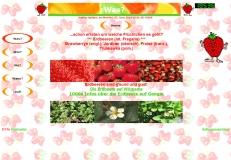 ErdbeerFeldVillHP02