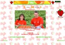 ErdbeerFeldVillHP04